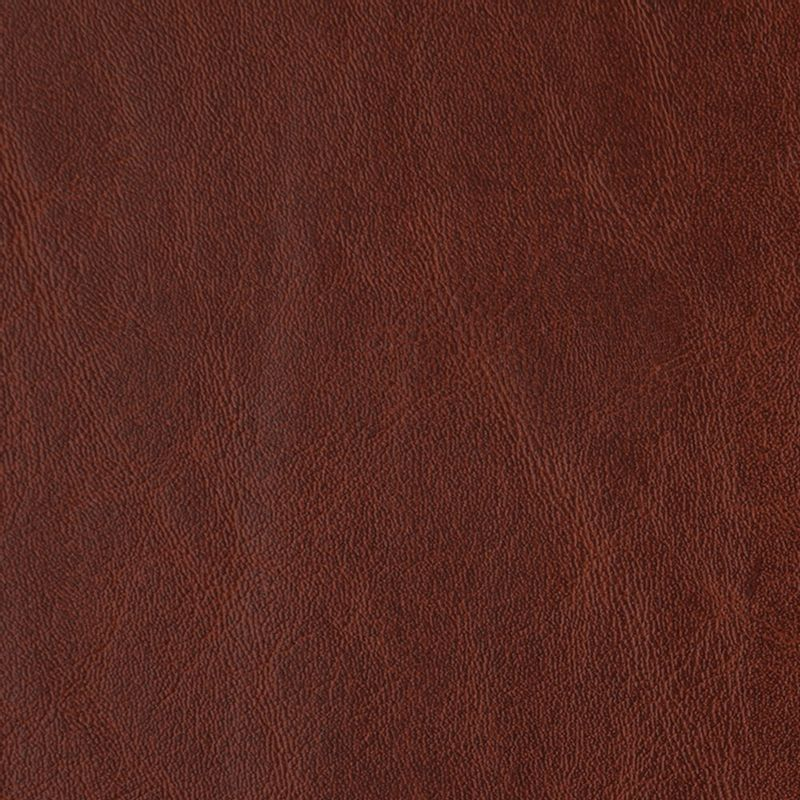 cuerina-talampaya-6172-04