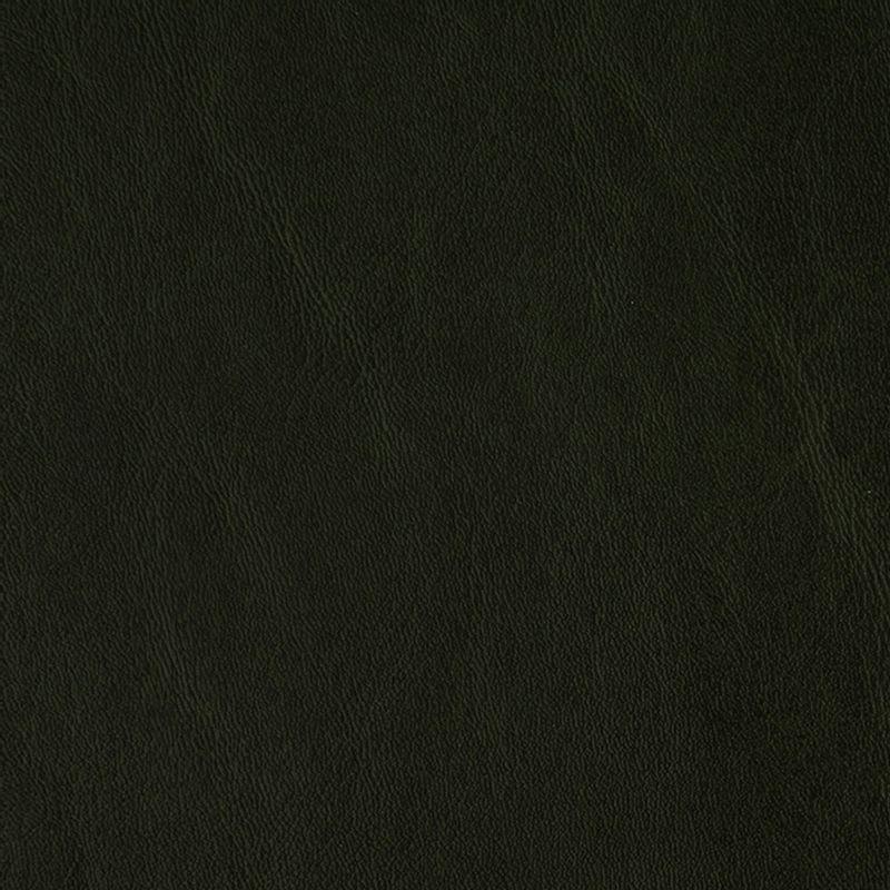 cuerina-talampaya-6173-04