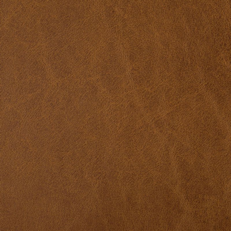 cuerina-talampaya-6531-03