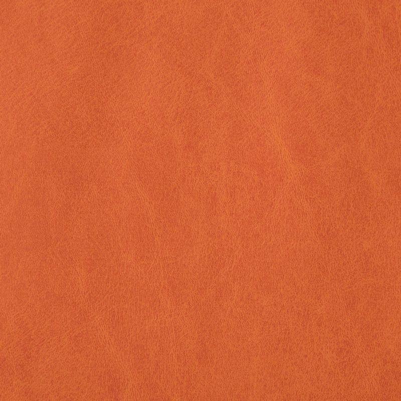 cuerina-talampaya-6538-03