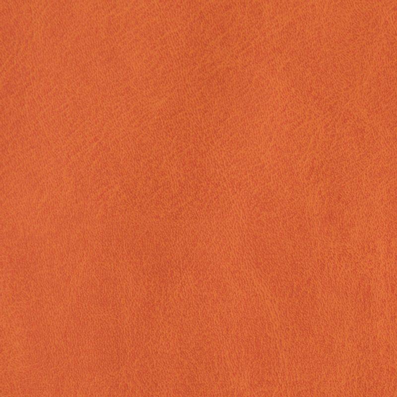 cuerina-talampaya-6538-04