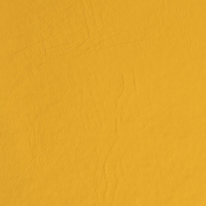 cuerina-bufalo-amarillo-04