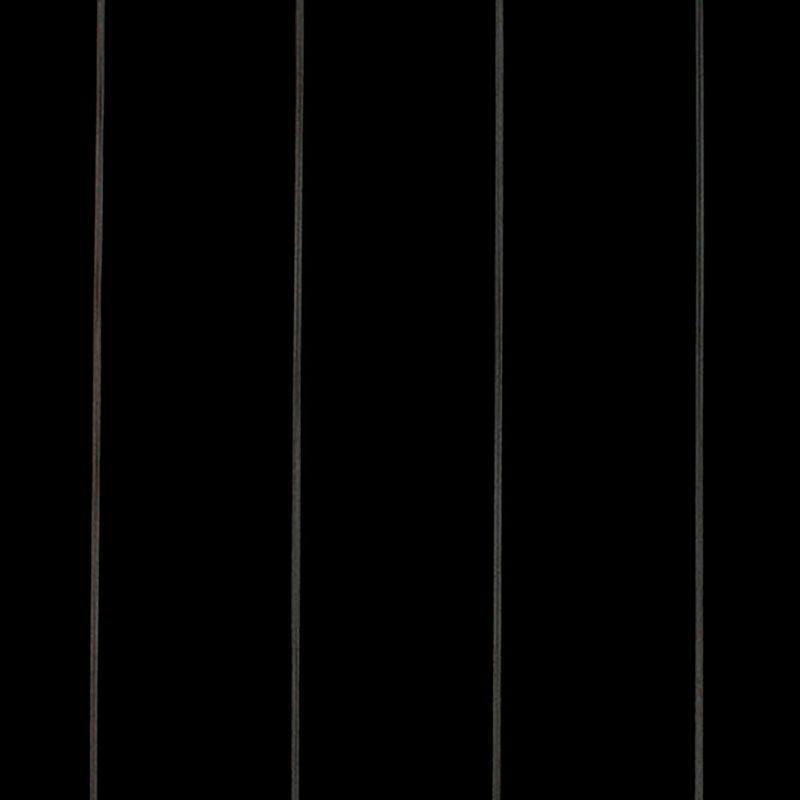 lona-dickson-orchestra-naples-D115-01